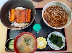 Shinochan-eel-set-march-2021