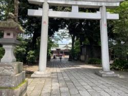 Shinochan-july12th2021